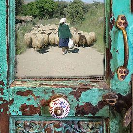Herderin met schaapskudde in antieke deur van Rob Kloosterman