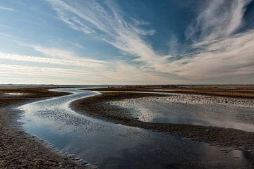 Waterlijnen bij de  Slikken van Flakkee  van Eddy 't Jong