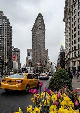 NY Flatiron building