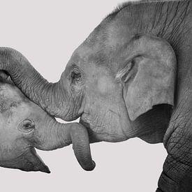 Liefde van moeder en kind, knuffelende olifanten. Zwart wit. van Rietje Bulthuis