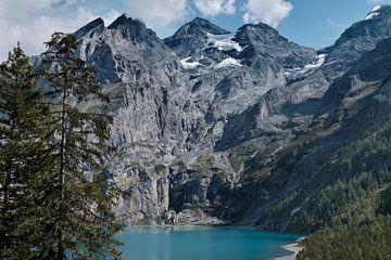 De Oeschinensee in de alpen van Zwitserland van FRNS