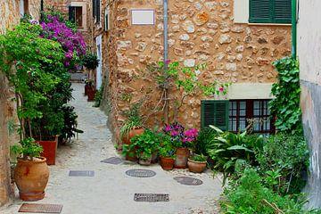 Dorpsgezicht Fornalutx, Mallorca van Inge Hogenbijl