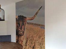 Klantfoto: Hooglander van Neomie Timmer, op naadloos behang