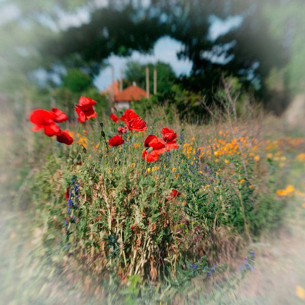 Bloemen wei van Erik Reijnders