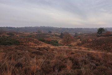 Landschaft bei der Posbank von Sander Miedema