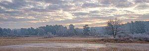 Gefrorener Teich von Johan Vanbockryck