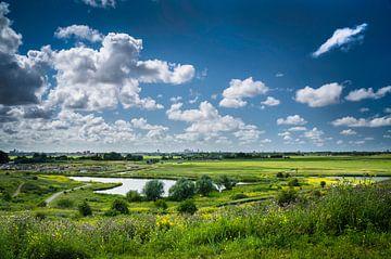 Den Haag und die Polderlandschaft von Ricardo Bouman | Fotografie