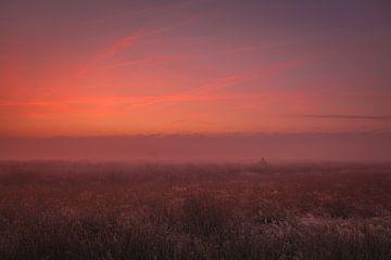 Dynamische lucht voor zonsopkomst Dwingelderveld van Anneke Hooijer