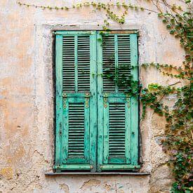 Oude deur met luiken en klimop in Italië van Ellis Peeters