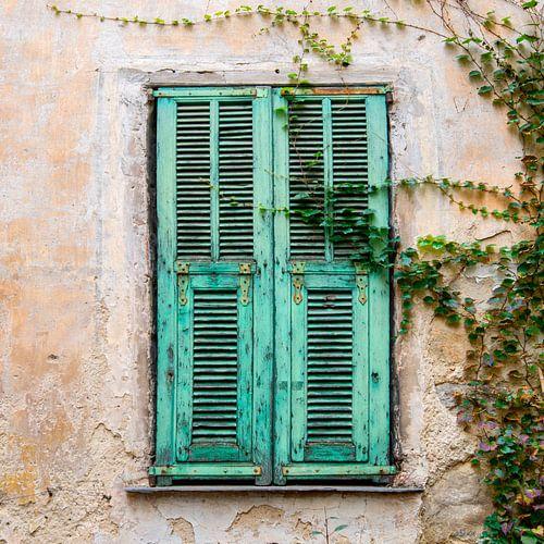 Oude deur met luiken en klimop in Italië