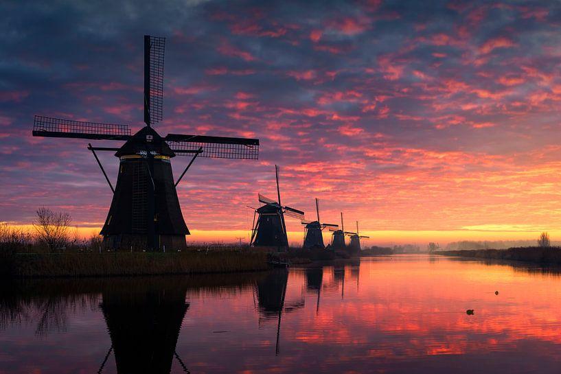 Morning Glory - UNESCO Kinderdijk van Vincent Fennis