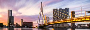 Panorama des goldenen Sonnenaufgangs Rotterdamer Erasmusbrücke