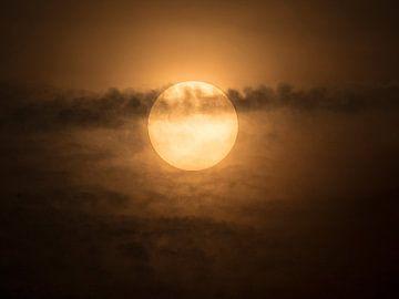 De zon van Ron Westbroek