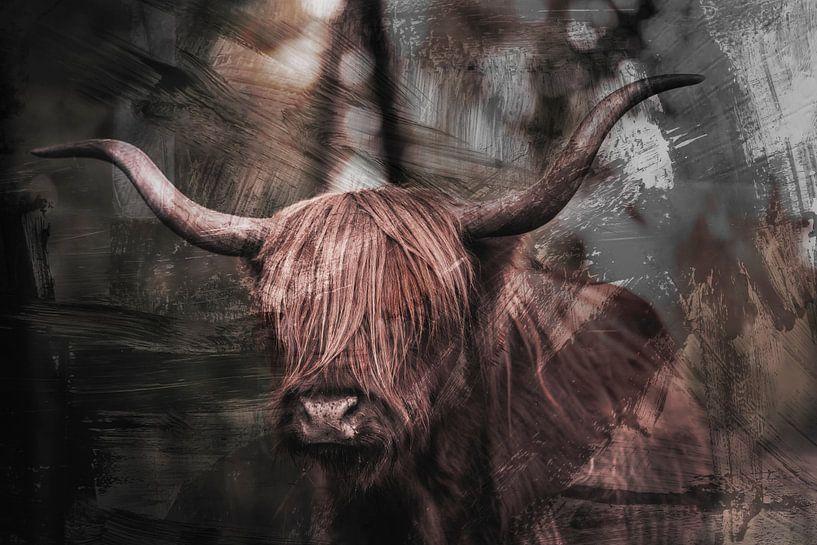 Schottischer Hochländer (schottischer Hochländer) von Steven Dijkshoorn