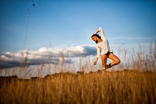 Ballerina op de Veluwe van