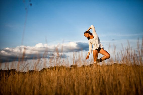 Ballerina op de Veluwe van Chau Nguyen
