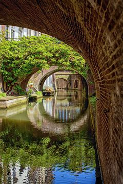 De Kromme Nieuwegracht in Utrecht in de lente (6)
