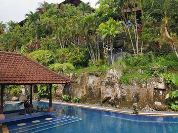 Leeg zwembad op Bali, Indonesië van Raymond Wijngaard