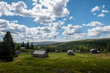 Zurück in der Zeit in den schwedischen Bergen. von Marco Lodder
