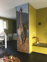 Photo de nos clients: Giraffe am Meer sur De Afrika Specialist, sur fond d'écran