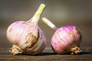 Fresh garlics von Jan Brons