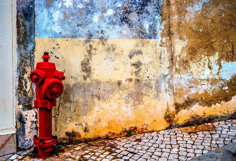 Alte Mauer mit Hydrant von Fred Leeflang