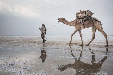 Auf dem Weg zu einem Salzsee von Photolovers Reisfotografie