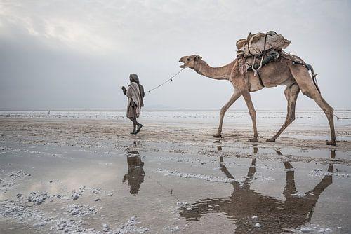 Kameel en man lopen door de woestijn | Ethiopië