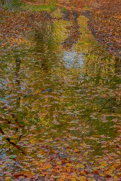 herfstbladeren van Corrie Ruijer