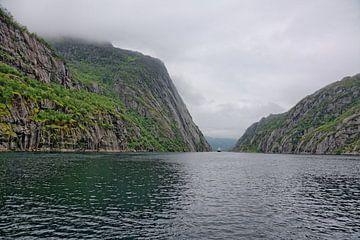 Hurtigruten im Trollfjord von Gisela Scheffbuch