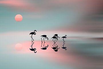 Familie Flamingos., Natalia  von 1x