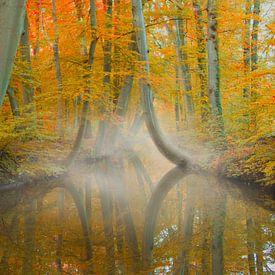 Herfst in Twickel von Ben Bokeh