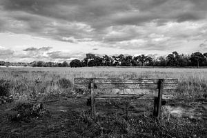 Strijbeekse Heide onder wolkendeken van Susan van der Riet