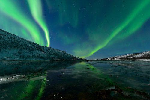 Noorderlicht of poollicht boven Senja in Noord Noorwegen