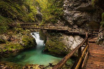 Canyon de la Vintgar Gorge avec passerelle en bois sur iPics Photography
