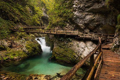 Vintgar Gorge kloof met houten vlonder in Slovenië van iPics Photography