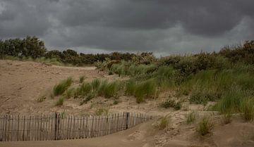 Duinlandschap in Zeeland van Martine Moens