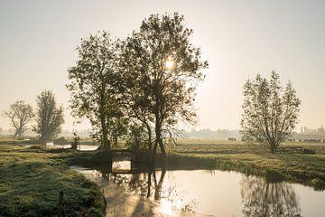 Sonnenaufgang in nebliger malerischer Polderlandschaft von Beeldbank Alblasserwaard