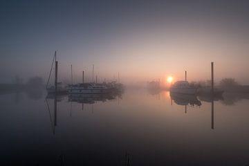 Sonne durch den Nebel auf der Hafeninsel Maurik von Moetwil en van Dijk - Fotografie