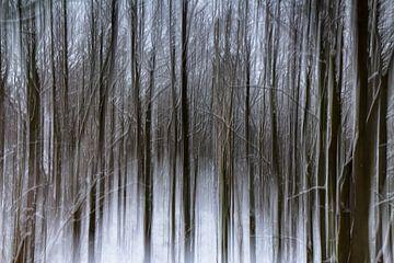 winterwoud van Wim Roebroek