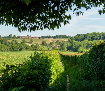 Doorkijkje op buurtschap Waterval in Zuid-Limburg van John Kreukniet