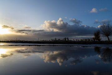 Reflexionen über das Wasser von Willian Goedhart