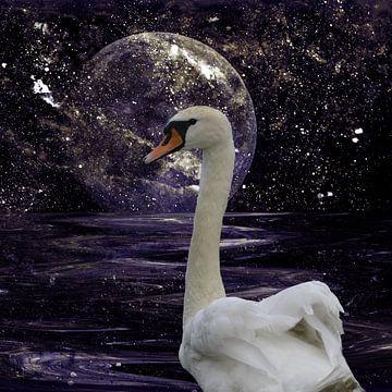 Swan Lake van Christine Nöhmeier