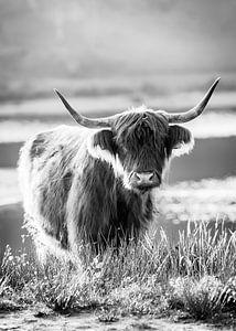 Porträt eines schottischen Highlander von Evelien Oerlemans