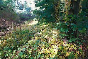 Der Wald, der deine Schritte dämpft und deinen Schatten verschlingt. von Arie Visser