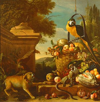 Ara und ein Affe, Melchior d'Hondecoeter