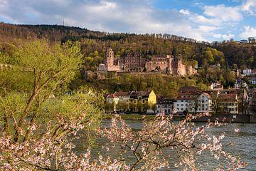 De lente in Heidelberg van Michael Valjak