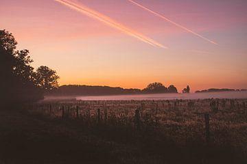 Sonnenaufgang im Naturschutzgebiet Bourgoyen-Ossemeersen Gent von Daan Duvillier