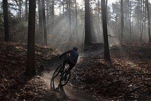 Radfahren in den frühen Morgenstunden von Andrew van der Beek