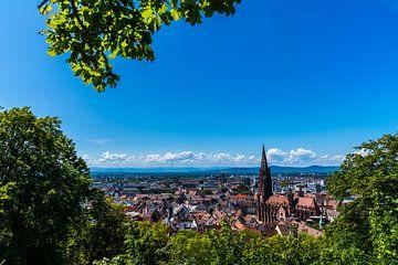 Freiburg im Breisgau Stadtansicht im Sommer unter grünem Baum von Simon Dux